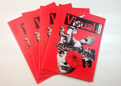 Revista Visual