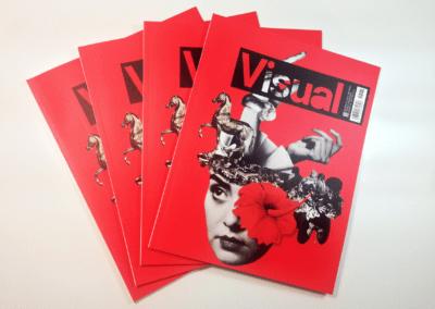 Visual aldizkaria